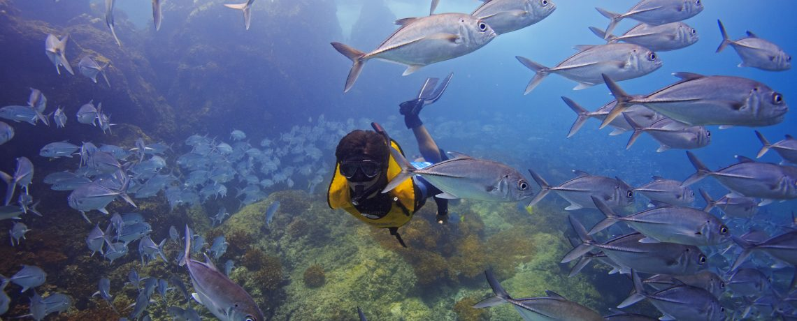 Snorkeling at Caño Island